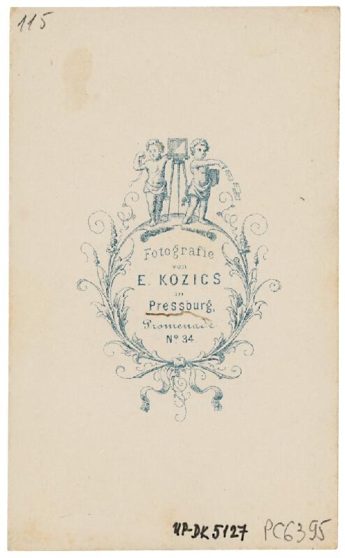 Eduard Kozič – Bratislavský hrad od severu