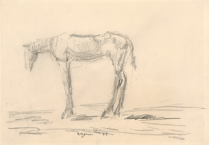 Cyprián Majerník - Vychudnutý koník