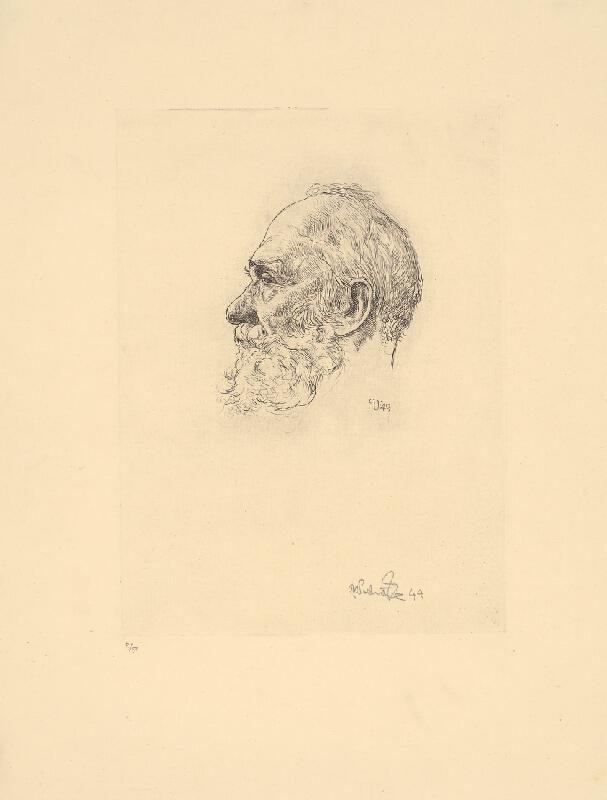 Jaroslav Vodrážka - Štúdia hlavy starca