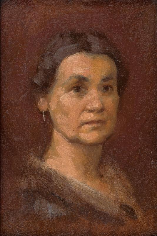 Milan Thomka Mitrovský - Podobizeň pani Šrobárovej