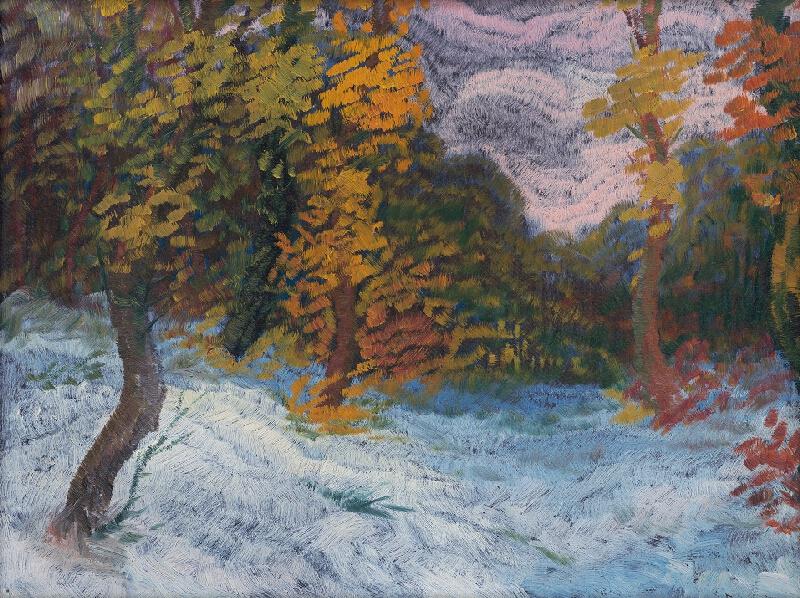 Anton Jasusch - Kraj lesa