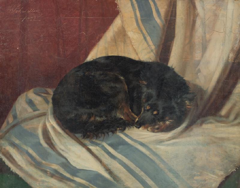 Friedrich Carl von Scheidlin - Štúdia ležiaceho psíka
