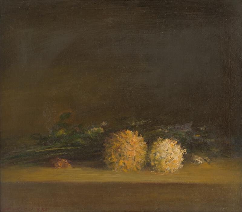 Ján Mudroch - Štúdia chryzantém