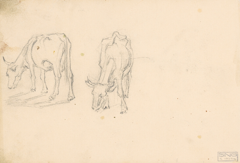 Jaroslav Augusta – Náčrty kravy a orby