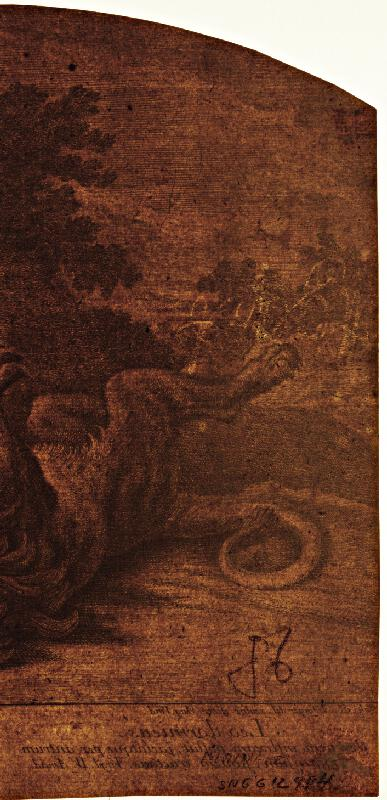 Johann Elias Ridinger - Spiaci lev
