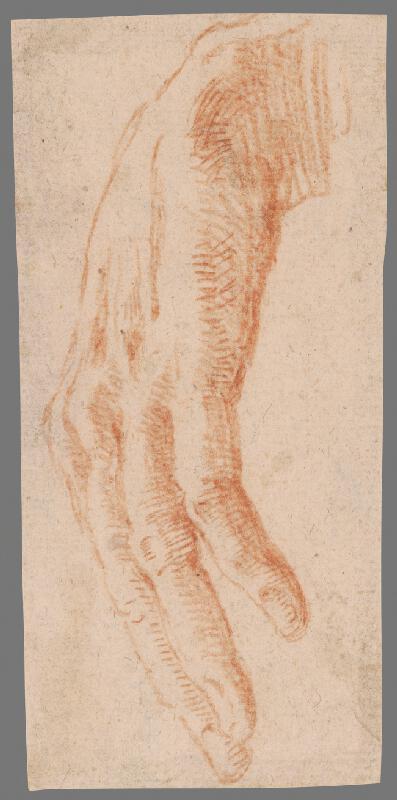 Stredoeurópsky majster z 18. storočia - Štúdia voľne zvesenej ruky
