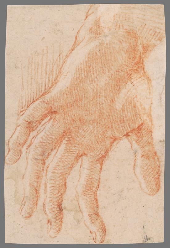 Stredoeurópsky majster z 18. storočia - Štúdia ľavej ruky