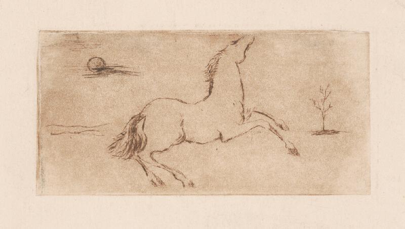 Ernest Špitz - Kôň
