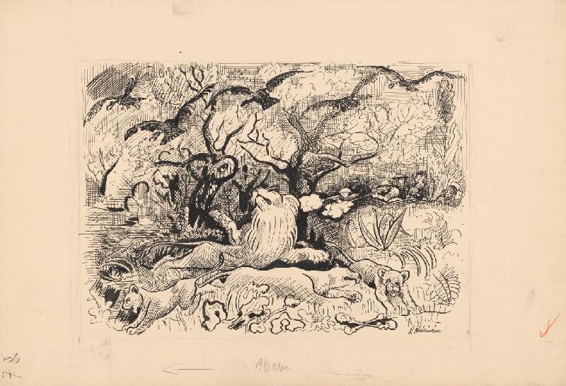 Arnold Peter Weisz-Kubínčan - Príbehy v divočine - 2