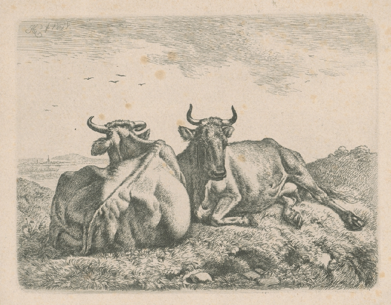 Johann Adam Klein - Ležiace kravy