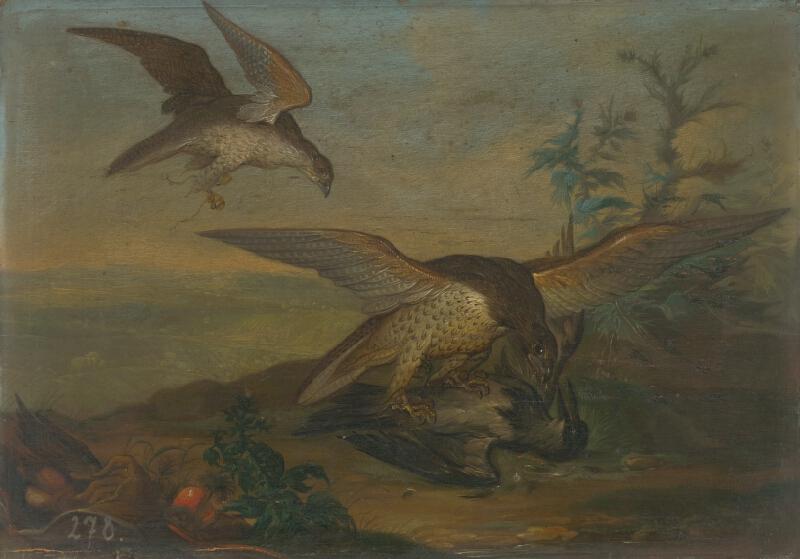 Nemecký maliar, Stredoeurópsky maliar zo začiatku 18. storočia - Zápas vtákov