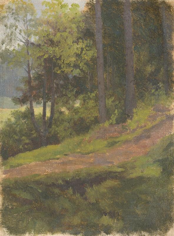 Jan Novopacký - Chodník pri okraji lesa