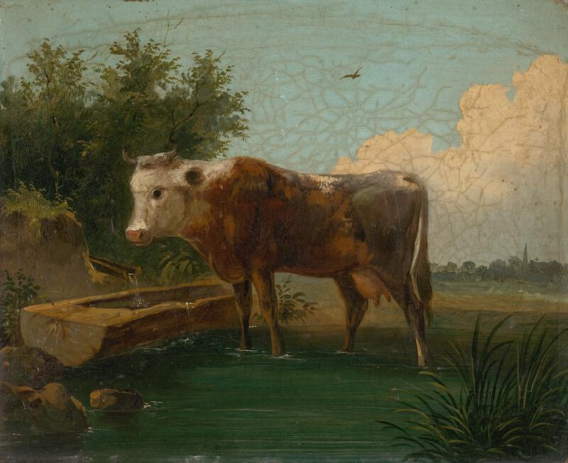 Stredoeurópsky maliar z 19. storočia - Krava