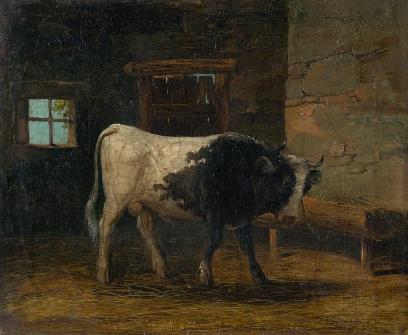 Stredoeurópsky maliar z 19. storočia - Býk
