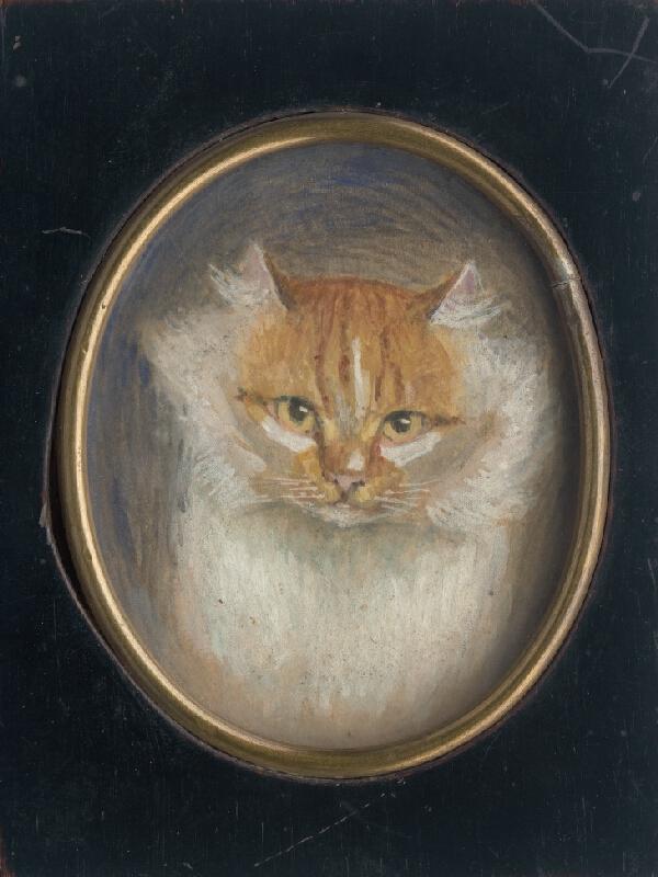 Stredoeurópsky miniaturista z 1. štvrtiny 19. storočia - Hlava mačky