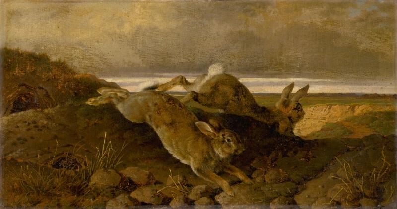 Friedrich Carl von Scheidlin - Utekajúce králiky