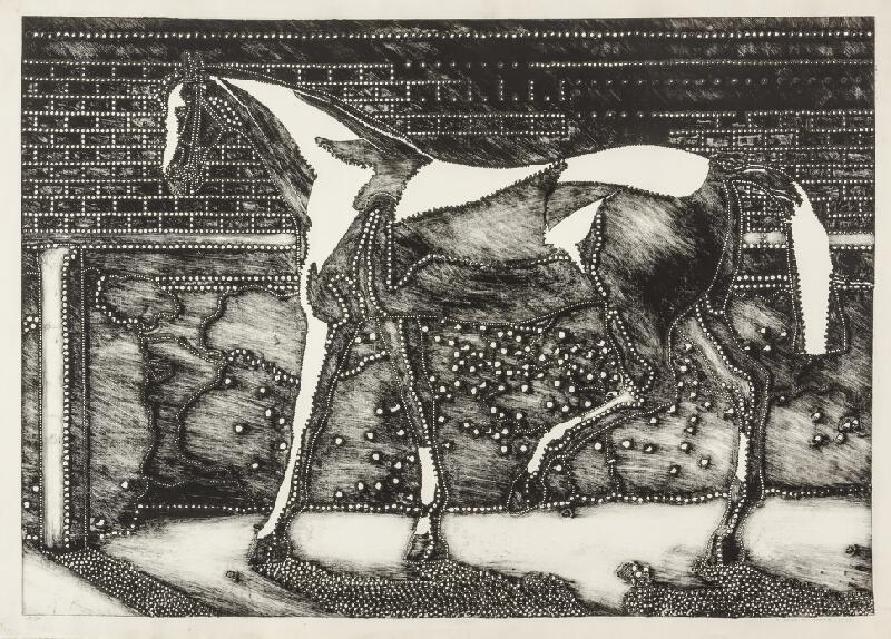Alena Kučerová - Kůň